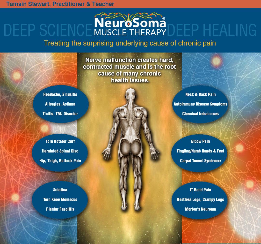 NeuroSomaDiagramFinal